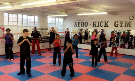 Five or Ten Combat Training Classes or One-Month Membership at Aero-Kick (Up to 83% Off)