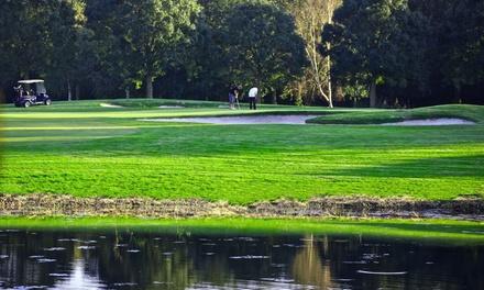 9 of 18 holes golfen op de Championship Course van Golfbaan Waterland Amsterdam