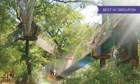 Entrée pour enfant ou adulte (5-64 ans) incluant un sac mine des Trolls à 15 € au parc Le Bois Des Lutins