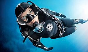 Atlantis Hamburg: SSI Open-Water-Diver-Tauchkurs inkl. Theorie und Praxis für 1 Person bei Atlantis Hamburg (34% sparen*)