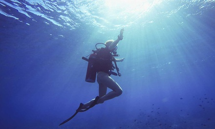 Open Water SCUBA Dive Course for One ($339) or Two People ($669) at Kiwi Divers (Up to $1,100 Value)