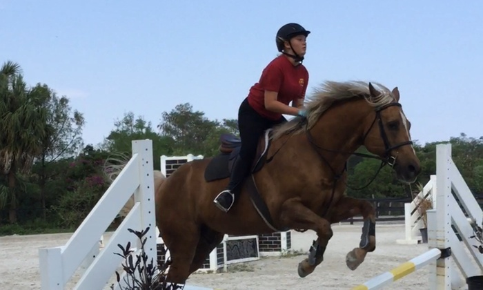 Millpond Farm - Palm Beach Farms: Up to 49% Off Horseback Riding Classes at Millpond Farm