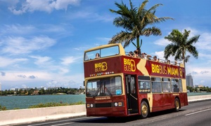 Hop-On, Hop-Off Miami Bus Tour with Optional Everglades and Boat Tour from Big Bus Tours (Up to 49% Off)