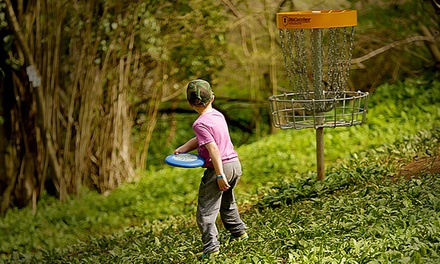 Woodland Frisbee Golf Pass including Yeti Hunt for Up to Four at Mendip Activity Centre