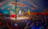 Zippos Circus, 12 April–9 May at Four Locations (Up to 50% Off)