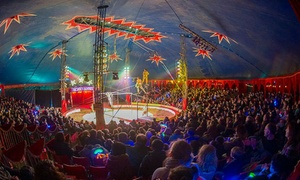 Zippos Circus: Zippos Circus, 7 July - 7 August, Five Locations (Up to 50% Off)