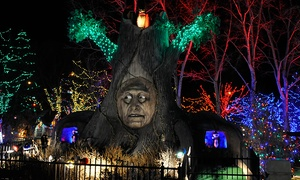 Hyland Hills Adventure Golf and Raceway: Holiday Lights Mini-Golf Experience for Two or Four at Hyland Hills Adventure Golf and Raceway(40% Off)