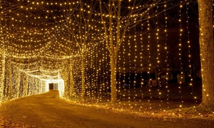 Christmas at Clay's – 33% Off Holiday Lights Experience at Christmas at Clay's 2017, plus 6.0% Cash Back from Ebates.
