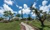 New Beach Hotel in Bermuda
