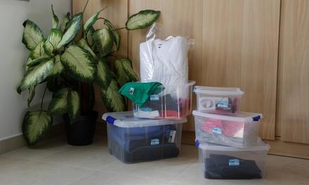 Cajas de almacenamiento multiusos
