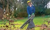 Groupon Goods Global GmbH: The Handy 3000w or 2600w Three-in-One Leaf Blower
