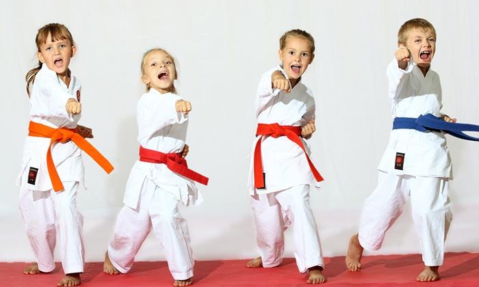 KIMA LEE Taekwondo School for Kids - Up To 69% Off ...