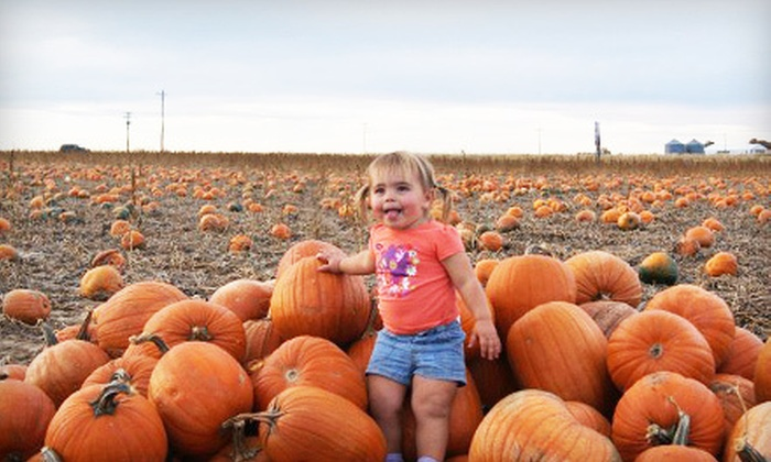 Pope Farms - Wiggins: Pumpkin-Patch Admission for Two, Four, or Six with Beverages at Pope Farms (Up to 53% Off)