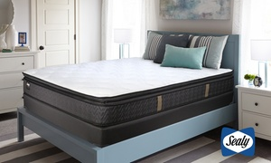 "Sealy Titanium 14"" Plush Pillowtop Mattress Set"