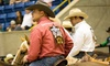 National Western - National Western Events Center: National Western: Rodeo All-Star Semi-Finals and Finals (April 15–16)