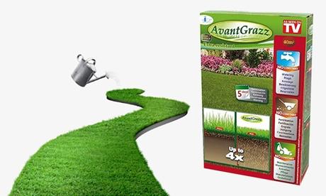 Pack de 1, 2 o 3 kg de semillas de césped resistentes AvantGrazz