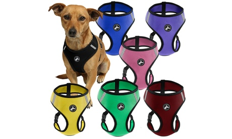 Soft Comfort Control Dog or Cat Pet Harness d52ce0a6-2c5c-11e7-9f21-00259069d7cc