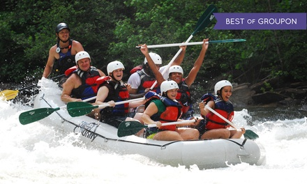 Whitewater Rafting for One, Two, or Six on Middle Ocoee River at High Country Adventures (Up to 55% Off)