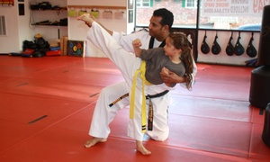 World Class Martial Arts Belleville: Up to 73% Off Gym Membership at World Class Martial Arts Belleville
