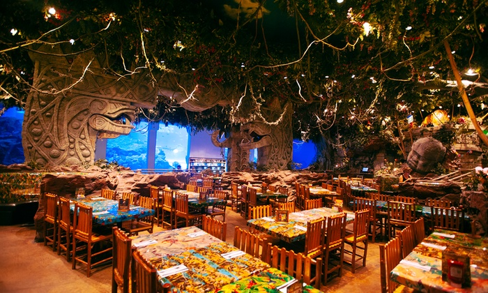 Rainforest Cafe Dubai Deals