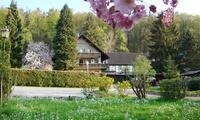 Basse-Franconie : 2 à 4 nuits avec petit déjeuner, bouteille de vin et 1 dîner à lHôtel Restaurant Paradeismühle pour 2