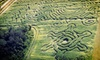 Long & Scott Farms - Mt. Dora: Corn Maze for Two or Four at Long & Scott Farms (Up to 55% Off)