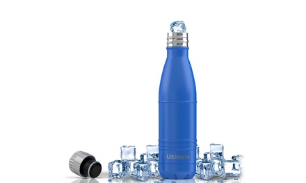 One or Two Ezisoul Insulated Stainless Steel Water Bottles