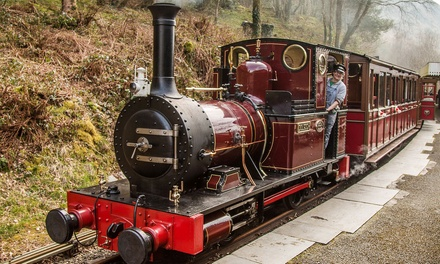 Adult Day Ticket for One or Two at Talyllyn Railway