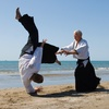 Up to 72% Off Aikido Classes