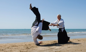 Humble Aikido: One, Two or Three Months of Aikido Classes at Humble Aikido (Up to 72% Off)