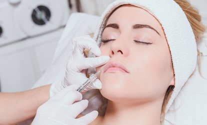 image for 0.5 or 1ml Dermal Filler at The Body Stylists (Up to 57% Off)