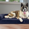 Sofa-Style Quilted Memory Foam Pet Dog Bed