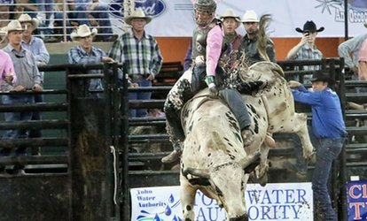 image for 141st Silver Spurs Rodeo (June 1–2)