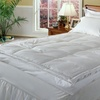 "All Seasons Luxury 5"" Down Pillow Top Featherbed"