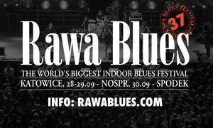 Rawa Blues Festival: Od 79 zł: bilet na Rawa Blues Festival w Katowickim Spodku