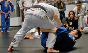 CTA Rockwall: 10 or 20 Brazilian Jiu-Jitsu Classes at CTA Rockwall (Up to 50% Off)