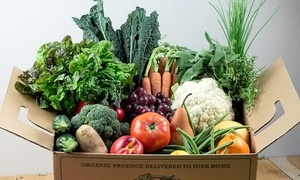 It's Organic 2U: $13 for One Regular Harvest Box plus $5 or $10 Off All Future Orders from It's Organic 2U ($39.99 Value)