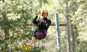 Eco-Adventures 306 Collective: Zipline Tour and Gift Shop Credit for Two, Four, or Eight from Eco-Adventures 306 Collective (31% Off)