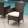 Outdoor Wicker Dining Chairs with Cushions (2-Pack)