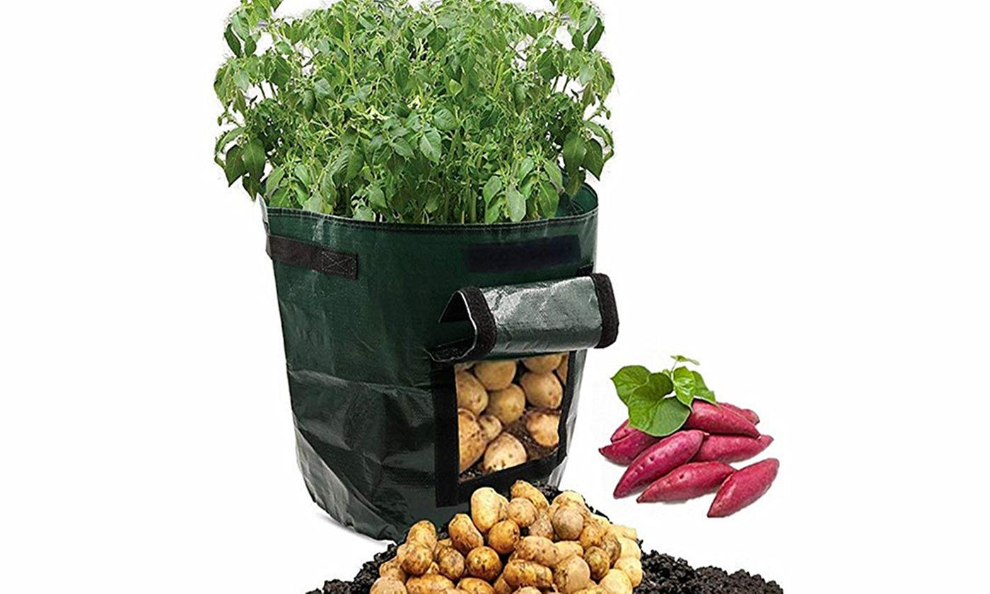One or Two Waterproof Garden Plant Bags with Side Window
