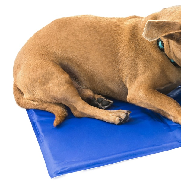 Cooling Pet Mat With Free Travel Bowl