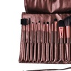 Professional Makeup Brush Set with Pouch (13-Piece)