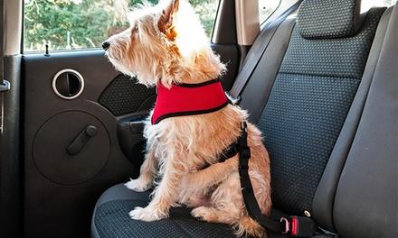 Pet Seat Clip