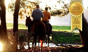 """חוות היער 2: חוות היער בחדרה: טיול רכיבת סוסים ביער רק ב-69 ₪ לשעה או טיול לאורך חוף הים בפארק נחל חדרה, ב-89 ₪ בלבד. תקף גם בסופ""""ש"""