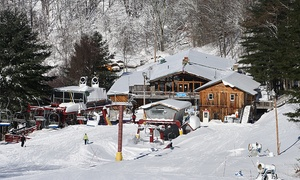Wolf Ridge Ski Resort: One or Four Lift Tickets at Wolf Ridge Ski Resort (Up to 53% Off)