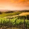 ✈ Circuit Toscane : 7 ou 11 nuits, petit déjeuner, voiture et vol A/R