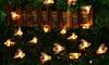 30-LED Solar-Powered Bee Lights