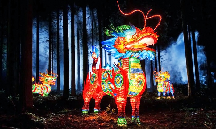 Tampa's Lowry Park Zoo - Tampa's Lowry Park Zoo: Admission for Two or Four to Zoominations Lantern Festival at Tampa's Lowry Park Zoo (Up to 51% Off)