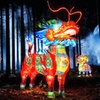 Up to 51% Off Admission to Zoominations Lantern Festival