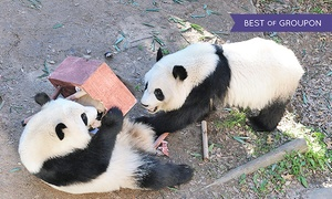 "Zoo Atlanta: Dinner for Two with ""Love in the Zoo"" Show at Zoo Atlanta (42% Off). Eight Options Available."